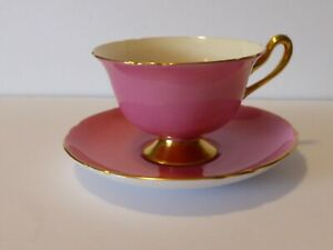 Shelley teacup and saucer pink with fruit gilding