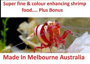 The best Shrimp food 500pc++ Pellets Food - Cherry Crystal Red/Black Shrimps
