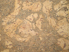 dekorativer Wandkork Wandplatten Naturkork Pinnwand Isolation 600x300x3mm