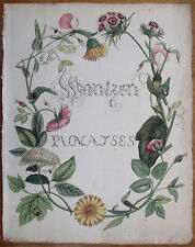 Caspar Stoll Original Large Colored Engraving Beautiful Title Bugs - 1780