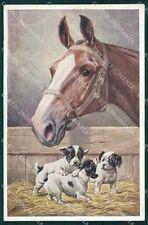 Reichert Horse and puppy dog MM 1169 postcard cartolina QT6983