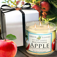 Fall Candle Macintosh Apple, Handmade, All Natural Soy Candle in 17.5 oz 3-Wick