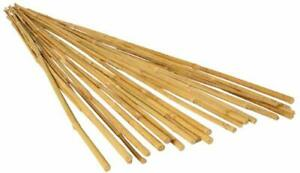 Hydrofarm HGBB2 2' Natural Pack of 25 Bamboo Garden Stake 2 Foot Tan for Lawn