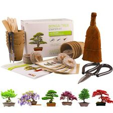 BONSAI TREE KIT for beginners, Grow Your Own - Bonsai Trees, Gardening Gift Set.