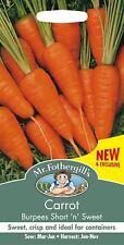 Mr Fothergills Pictorial Pack Vegetable Carrot Burpees Short n Sweet 1000 Seeds