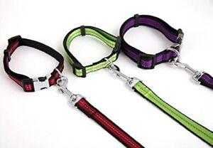 Reflektierende Hundehalsband Halsband mit Leine SET NYLON Halsbänder HUND