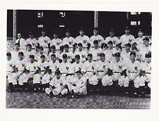 1951 NEW YORK YANKEES TEAM PICTURE - DiMaggio, Mantle, Berra - 8 X 10 PHOTO #2