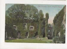 Fountain Court Raglan Castle 1906 Postcard 310b