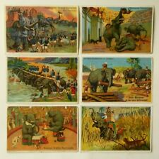 6 Kaufmannsbilder Serie 5418 Elefanten