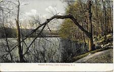 Natural Archway Lake Hopatcong NJ vintage postcard postally used 1910