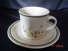 Royal Doulton WILL O' THE WISP Tea Cup And Saucer