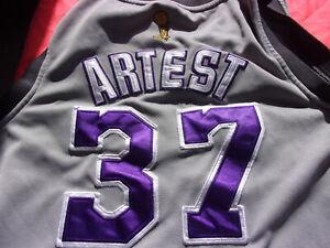 RARE Ron Artest aka Meadow World Peace Gray 2010 Finals LA Lakers #37 Jersey