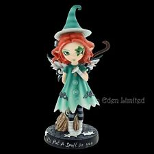 *I'LL PUT A SPELL ON YOU* Fairy Hand Painted Resin Figurine By Nemesis Now  19cm