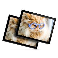 2 X Manteles Individuales De Cristal 20x25 Cm-Gracioso Ginger Cat Gafas #3844