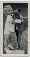 Greyhound Dog With Young Child 1930s  Ad Trade Card