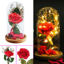 Christmas  Wooden Base LED Red Rose  Fallen Petals  Glass Dome Decoration Light