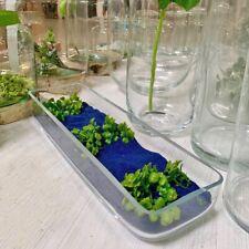 "Glass clearTerrarium Rectangular Vase Fruit Bowl 40cm/16"" planter container pot"