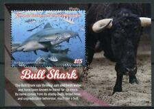 Grenadines Grenada 2019 MNH Sharks Bull Shark 1v S/S II Marine Animals Stamps