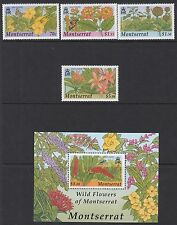MONTSERRAT :2002 Wild Flowers set + M/Sheet  SG1227-30 +MS1231 MNH
