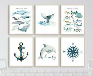 Sharks Whales Kid's Room Prints Marine Sea Ocean Art Dolphin Decor Set 6 628-A