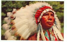 North American Native, Indian Chief (indiansA122*9