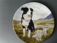 Plates/Spoons Border Collie Collectables