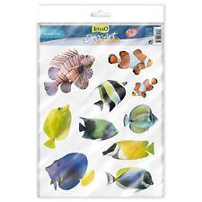 Tetradeco Vidrio Arte Tetra Deco Acuario Plástico Pegatinas tema de peces marinos