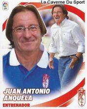 ENTRENADOR JUAN ANTONIO ANQUELA ESPANA GRANADA.CF STICKER CROMO LIGA 2013 PANINI