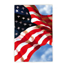 NEW EVERGREEN PATRIOTIC US FLAG MAY SHE FLY WITH PRIDE - GARDEN SIZE 12.5 x 18