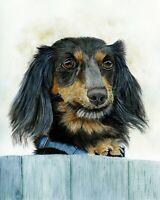 Dachshund Dog Watercolour  PRINT from an Original Watercolour Pet Portrait