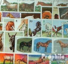 Motive 50 verschiedene Pferde ohne Reiten Marken