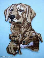 IRON-ON EMBROIDERED PATCH - LABRADOR - YELLOW - DOG