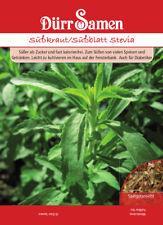 Dufte Kräuter Süßkraut Stevia rebaundiana 100 Samen Tolle Dekoidee Ostern