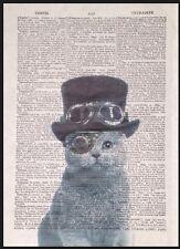 Steampunk Imprimé Chat Vintage Dictionary Page Décoration Murale Image Gris pour
