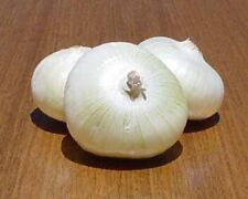 Onion Pickling Crystal White Wax Heirloom  - 400 Seeds