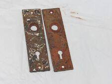 Pair Antique Vintage Cast Iron Eastlake Backplates Salvage