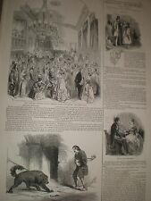 Grand Bal costume at Southampton & dog emile at Astley's london 1846 prints