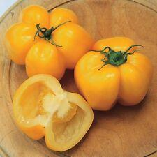 Yellow Stuffer Tomato 5+ seeds