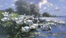 * BARGAIN 65 * Alexander Max Koester Ducks Lakeside Deckle Facsimile 13