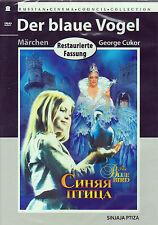 DVD russisch Der blaue Vogel Sinjaja Ptiza СИНЯЯ ПТИЦА