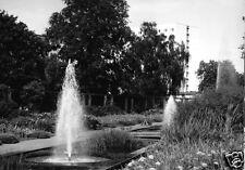 AK, Potsdam, Freundschaftsinsel, Staudengarten mit Springbrunnen, 1967