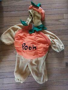 Disney Winnie the Pooh Pumpkin Halloween Costume size 6-12 Months used Plush