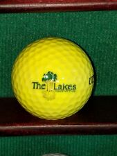 Vintage The Lakes Country Club Palm Desert California Logo Golf Ball