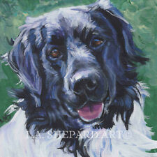 "Stabyhoun dog art canvas Print of Lashepard painting 8x8"" Stabij Staby"
