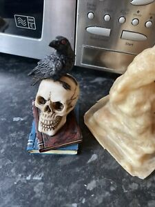 Little Raven Crow Skull Head On Books Rubber Latex Mould mold Gothic Garden