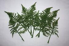 12 Artificial Asparagus Flocked Fern Leaf Dark Green Leaves Wedding Buttonholes