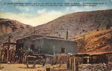 A TYPICAL MUD ADOBE HOME MEXICO ANIMALS POSTCARD (c. 1915)