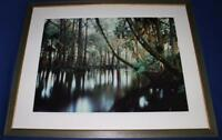 "Photograph - L. Ed. (50), Framed 30"" x 40"" Loxahatchee River, FL, Jeff Ripple"