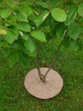 Mulchscheiben, 19 cm 12 Stck.,Mulchscheibe,  Pflanzenschutz , Unkrautschutz
