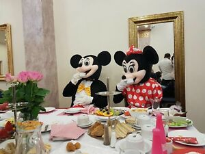 Mickey and Minnie Mouse mascot costume –Best Quality Brand New